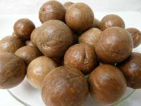 Macadamia in Schale, roh, Australien, 500g
