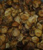 Feigen Lerida, Bio, 1 kg Türkei, EN- Qualität, Bio